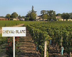 Interfrance: Right bank Bordeaux wines, Tasting notes and food